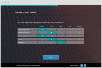 Umfrage-Vorlage: Website Feedback